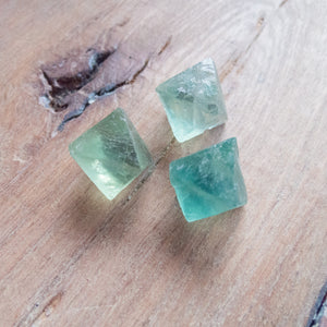 Fluorite (Green) - Raw Crystal - 3 pack