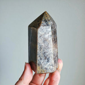 Black Moonstone Polished Point (M)