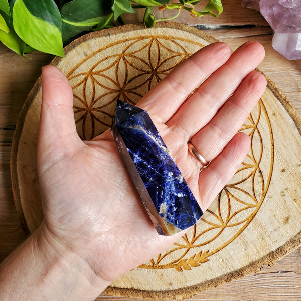 Sodalite Points (L)