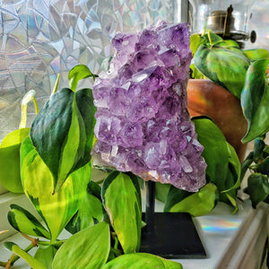 Amethyst Cluster on Display Stand #2