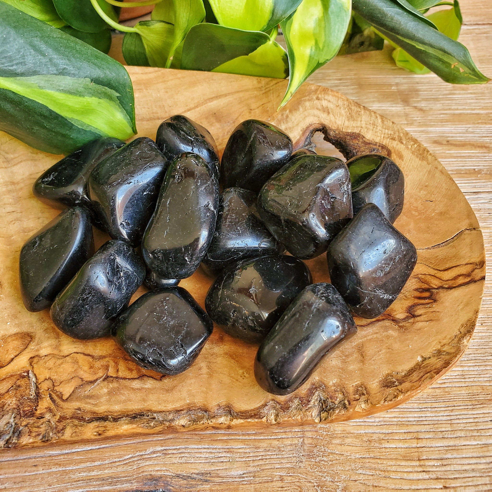 Black Tourmaline Tumbled Stone - LG