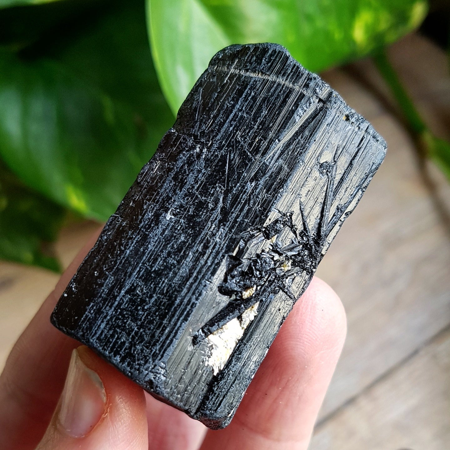 Black Tourmaline Crystals, Large, Raw
