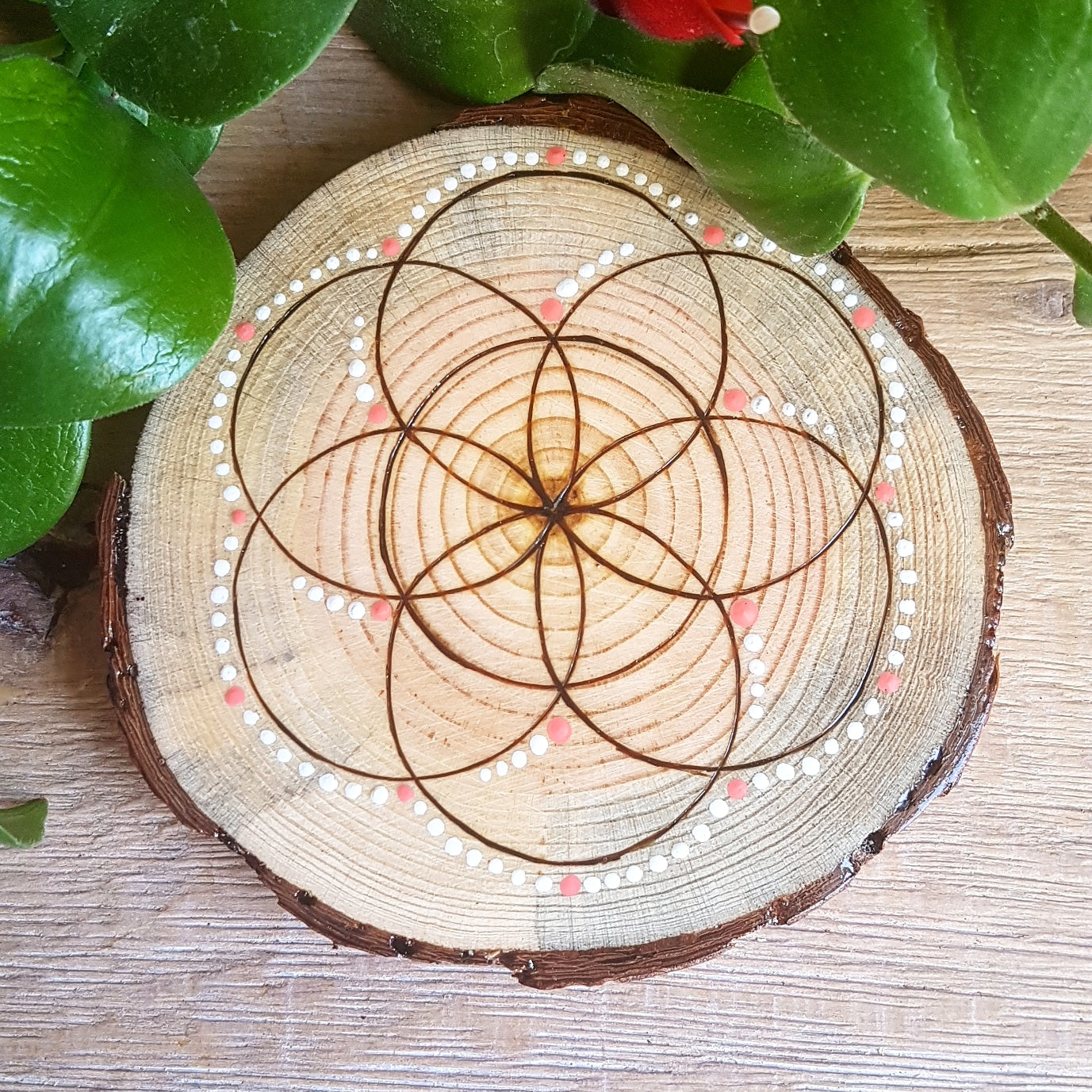 Handburned Seed of Life on Pine - White & Coral