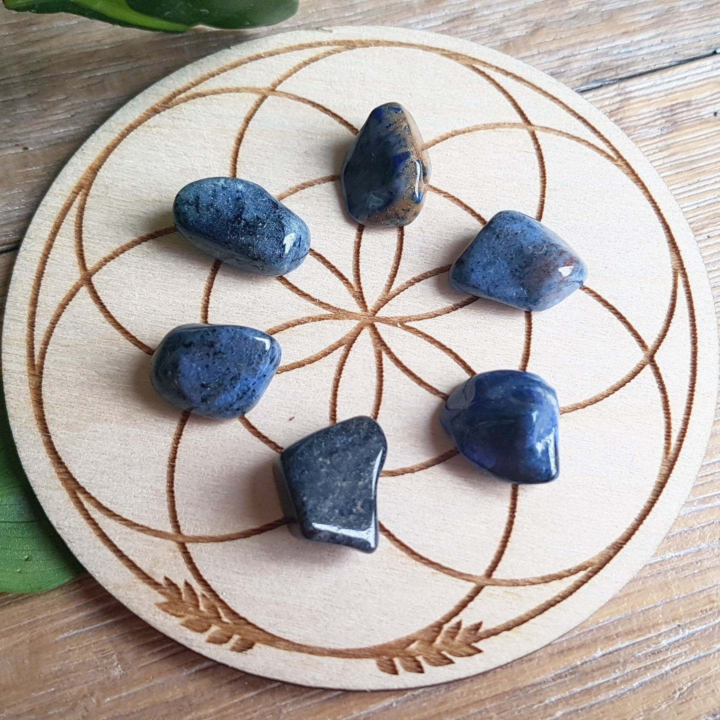 Dumortierite - Tumbled - 6 pack