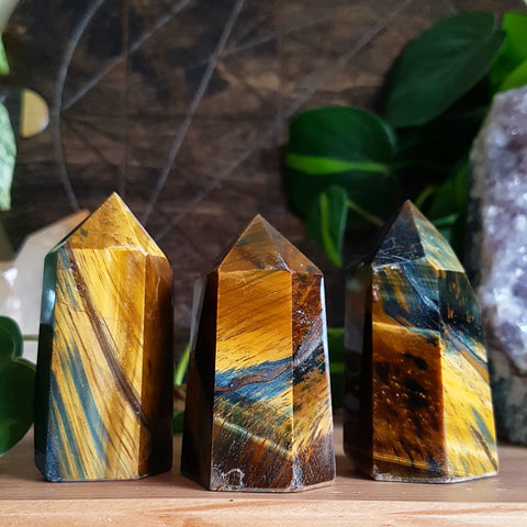 Tiger Eye Point - Polished - Medium