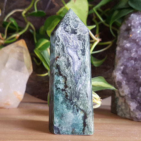 Moss Agate Point #5 - Polished