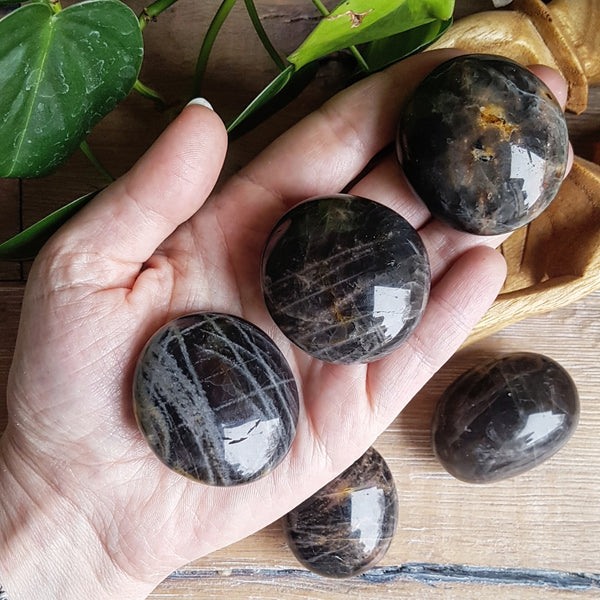 Black Moonstone Palmstone - Polished - Small