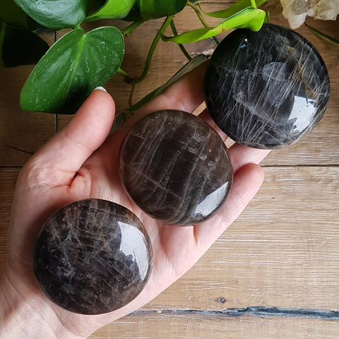 Black Moonstone Palmstone - Polished - Large