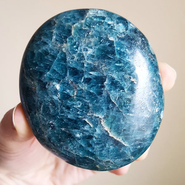 Blue Apatite Palmstone - Polished - XL