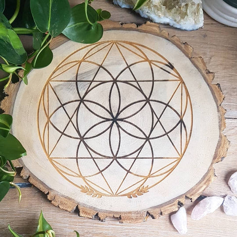 Wildcrafted Poplar Grid - Seed of Life with Hexagram