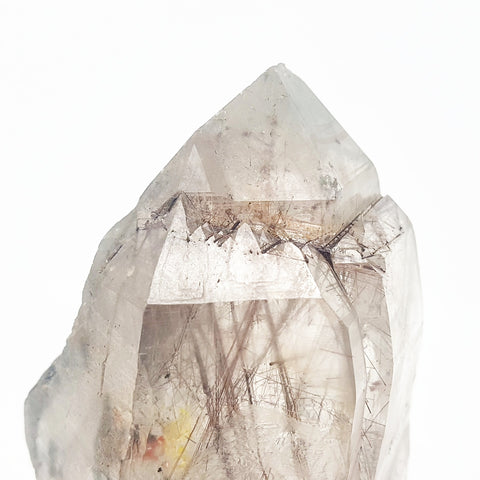 Rutilated Quartz Point (Brazil) XL