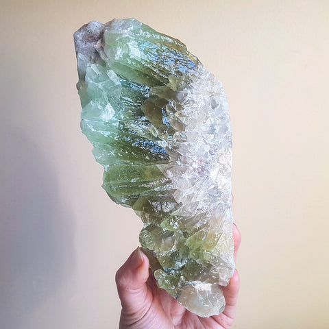 "Green Calcite ""Angel Wing"""