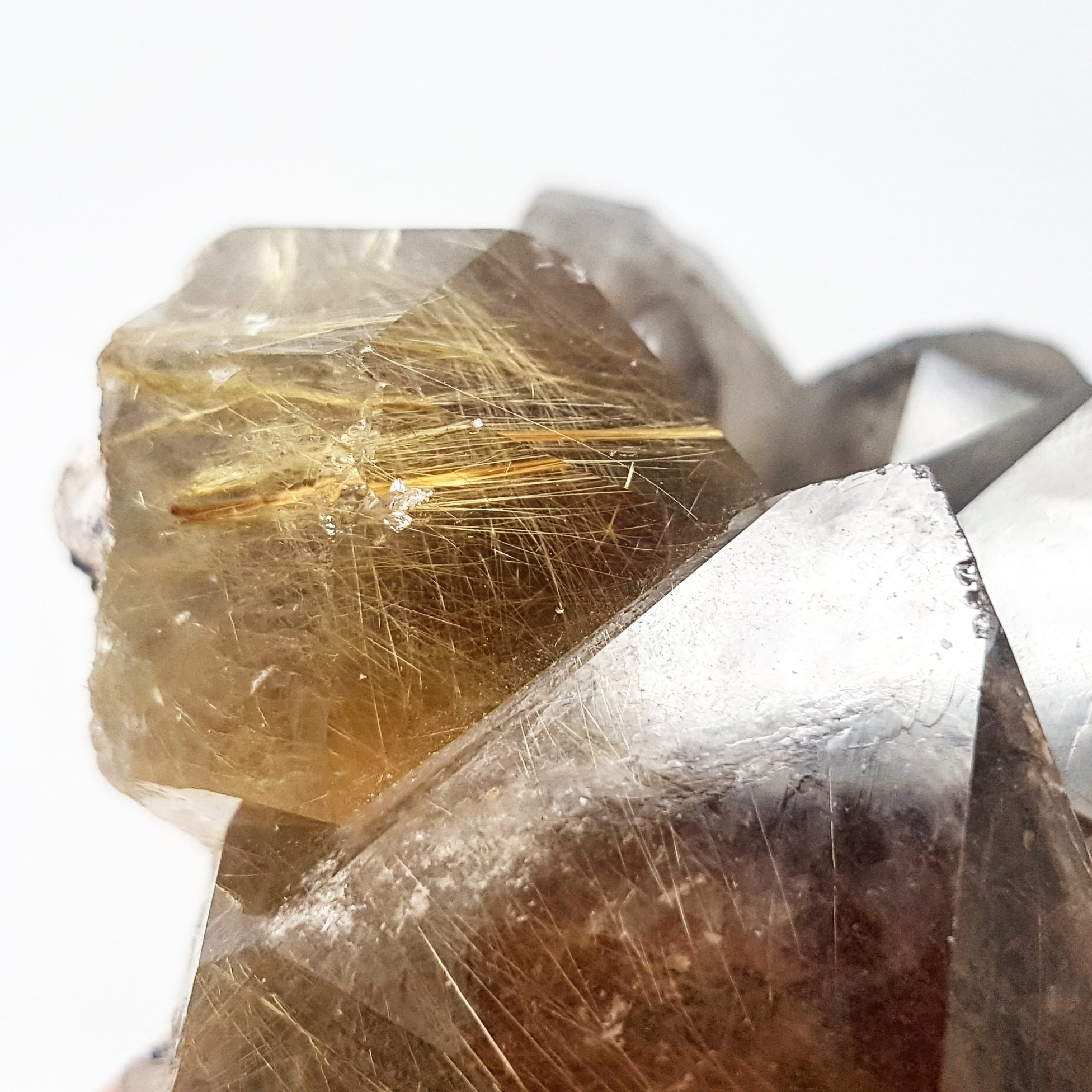 Rutilated Smoky Quartz Cluster - Brazil