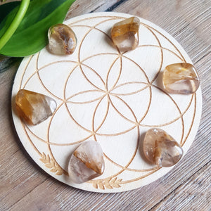 Golden Healer Quartz - tumbled - 6 pack