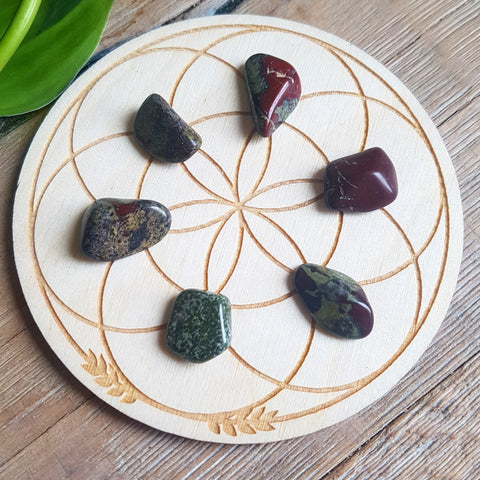 Dragon's Blood Jasper - Tumbled - 6 pack