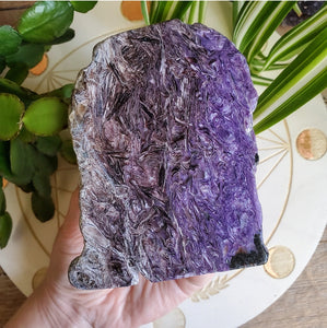 Charoite Slab (Polished) Russia