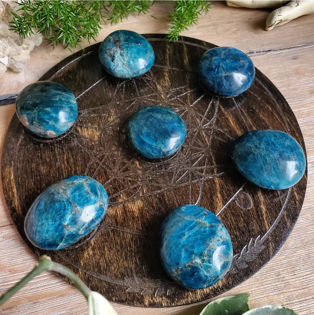 Blue Apatite Button Palmstones