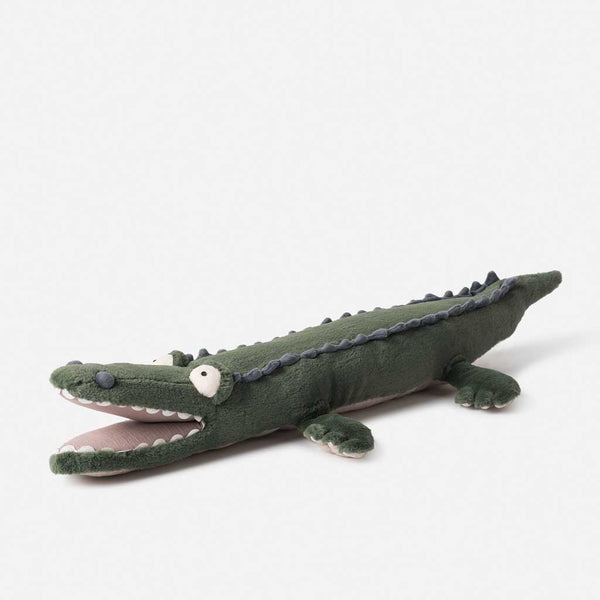 Betsy The Crocodile