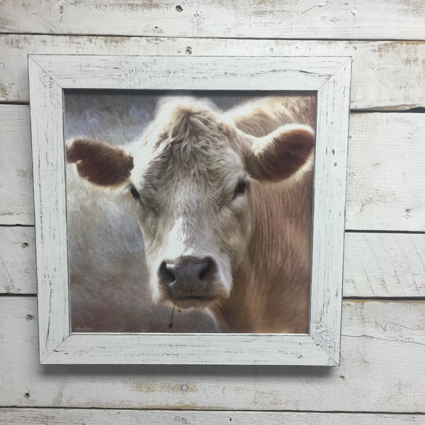 Up Close Cow Framed Print