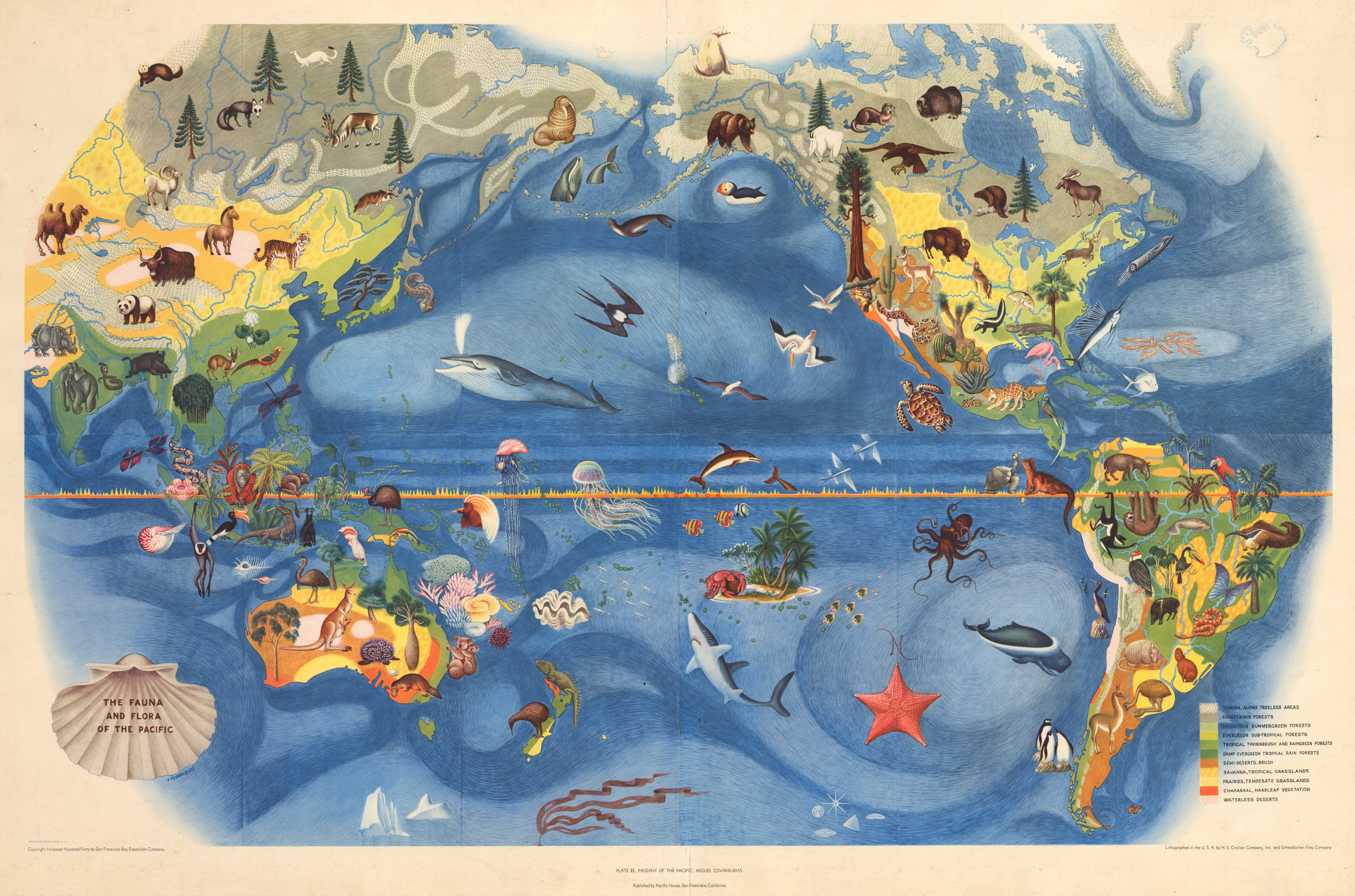 The Fauna and Flora of the Pacific by: Covarrubias 1940 - the ...