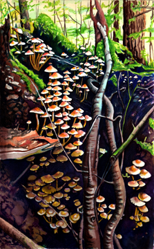 Cascading Mushrooms