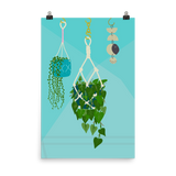 Hanging Plants and a Mobile Print