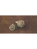 Crafted Spiral Brass Earrings