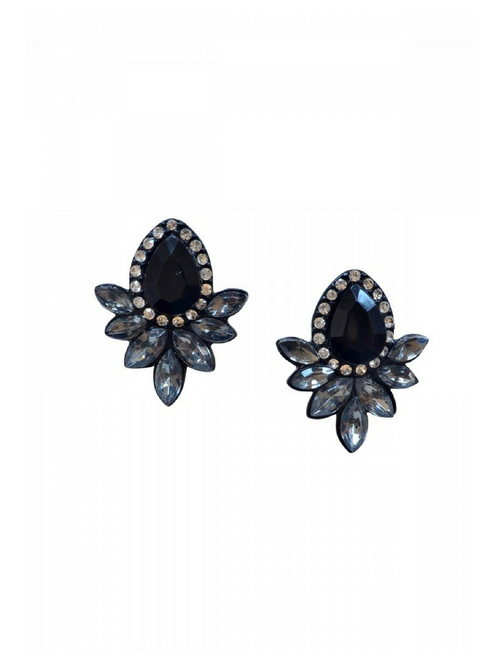 Ecstasy Black Earrings