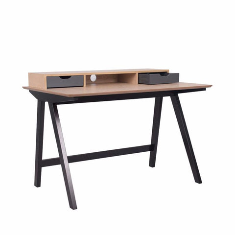 LOTTIE STUDY TABLE