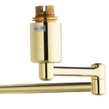 Polished Brass Traditional Double Swing Arm Wall Light