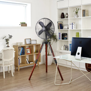 "Matte Black Star Tripod 16"" Stand Fan"