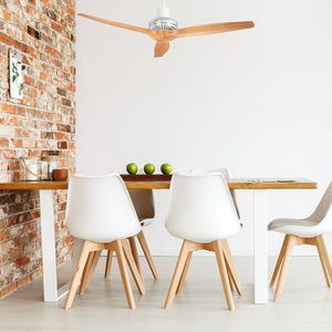 White Star Propeller Indoor Outdoor Ceiling Fan