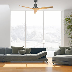 Graphite Star Propeller Indoor Outdoor Ceiling Fan
