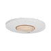 Orbio 360 7.6 Watt LED Cool White Gimbal Downlight - Steel City Lighting