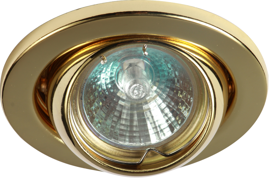 IP20 12V 50W max. L/V Brass Eyeball Downlight with Bridge