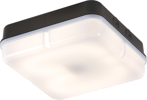 IP65 28W HF Square Bulkhead comes with Opal Diffuser and Black Base - Steel City Lighting