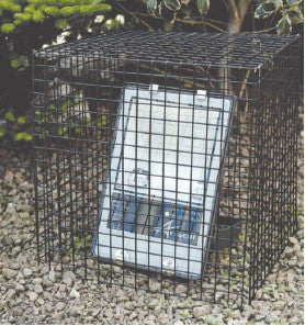 Wire Cage 280 x 230 x 330mm - Steel City Lighting
