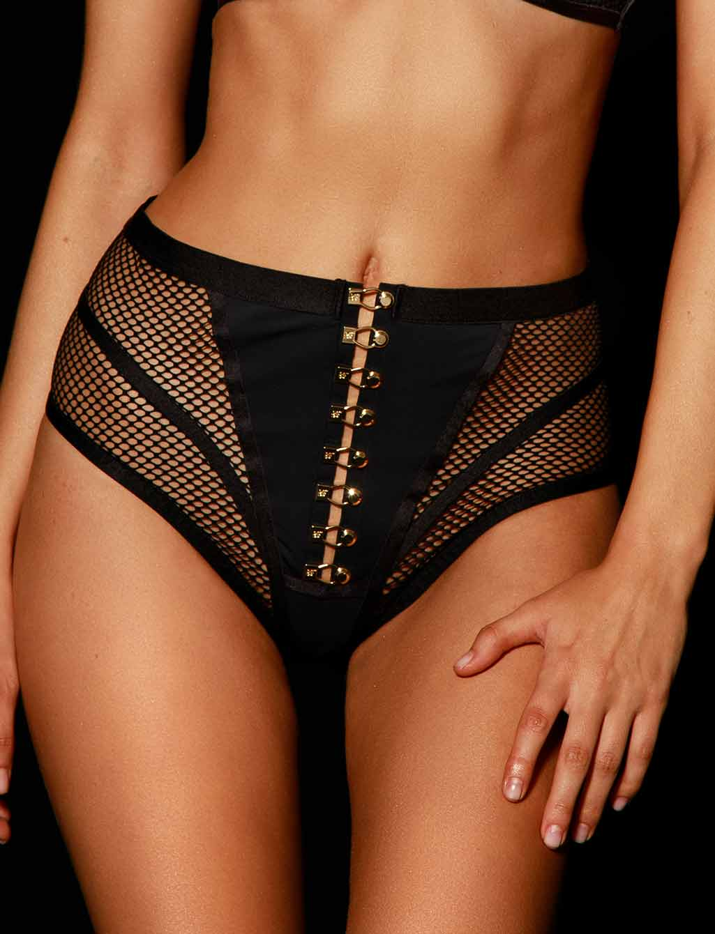 Tash Black Mesh Panty - Shop Lingerie | Honey Birdette