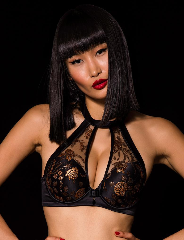 Amber Push Up Bra - Shop Lingerie | Honey Birdette