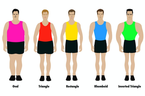 Five Shapes Of Modern Man Are Revealed