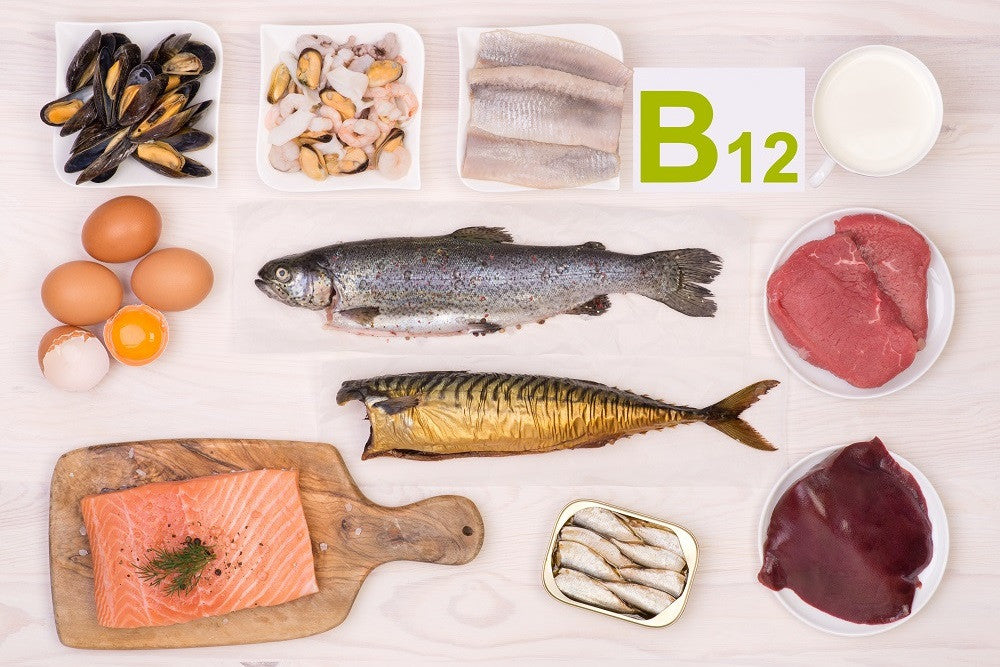 Which Foods Contain Vitamin B12