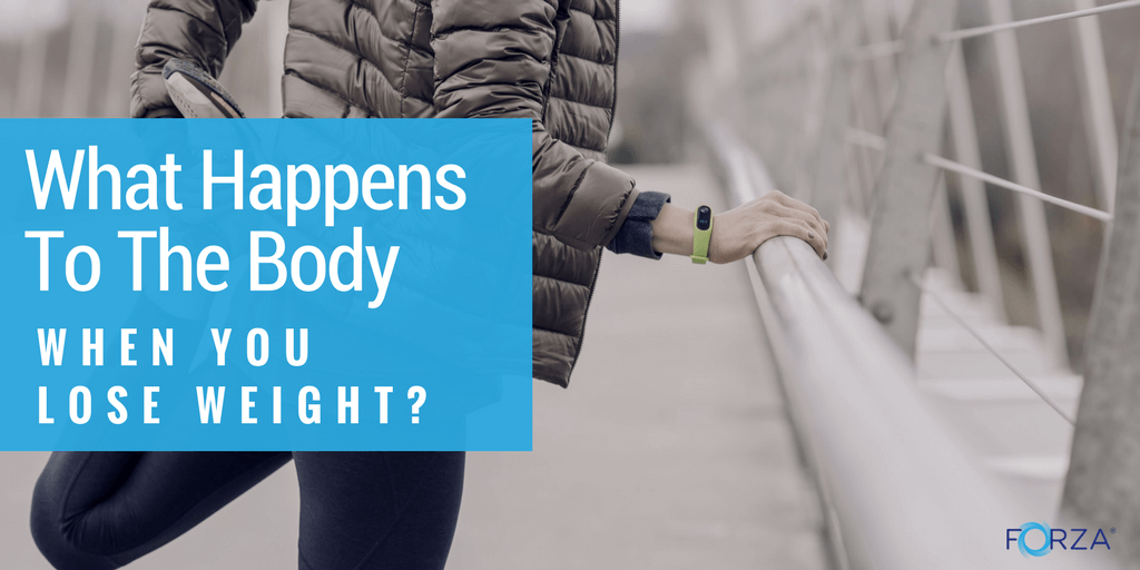 What Happens To The Body When You Lose Weight?