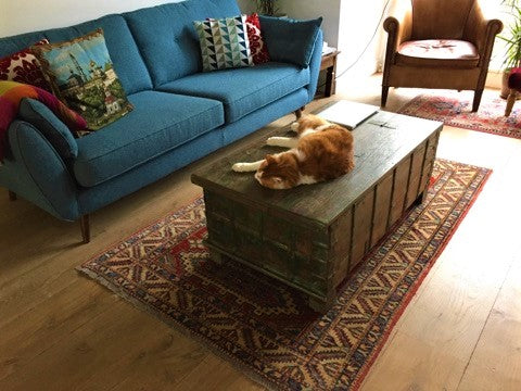 Trunk storage coffee table