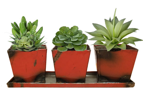 Set of 3 Planters with Tray - HomeStreetHome.ie