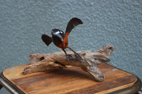 Bruant Bird Drifted Wood - HomeStreetHome.ie