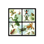 Set of 4 Coasters - HomeStreetHome.ie
