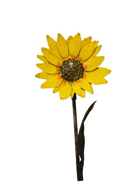 Sunflower - HomeStreetHome.ie
