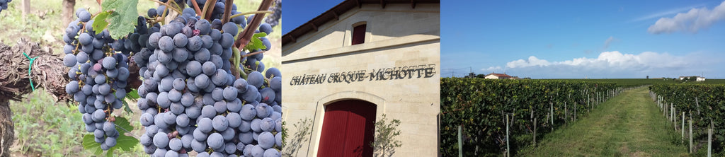 Chateau Croque Michotte