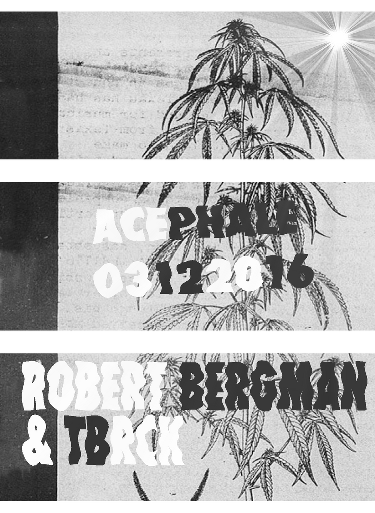 Robert Bergman at Salon Des Amateurs & Acephale 2nd / 3rd December