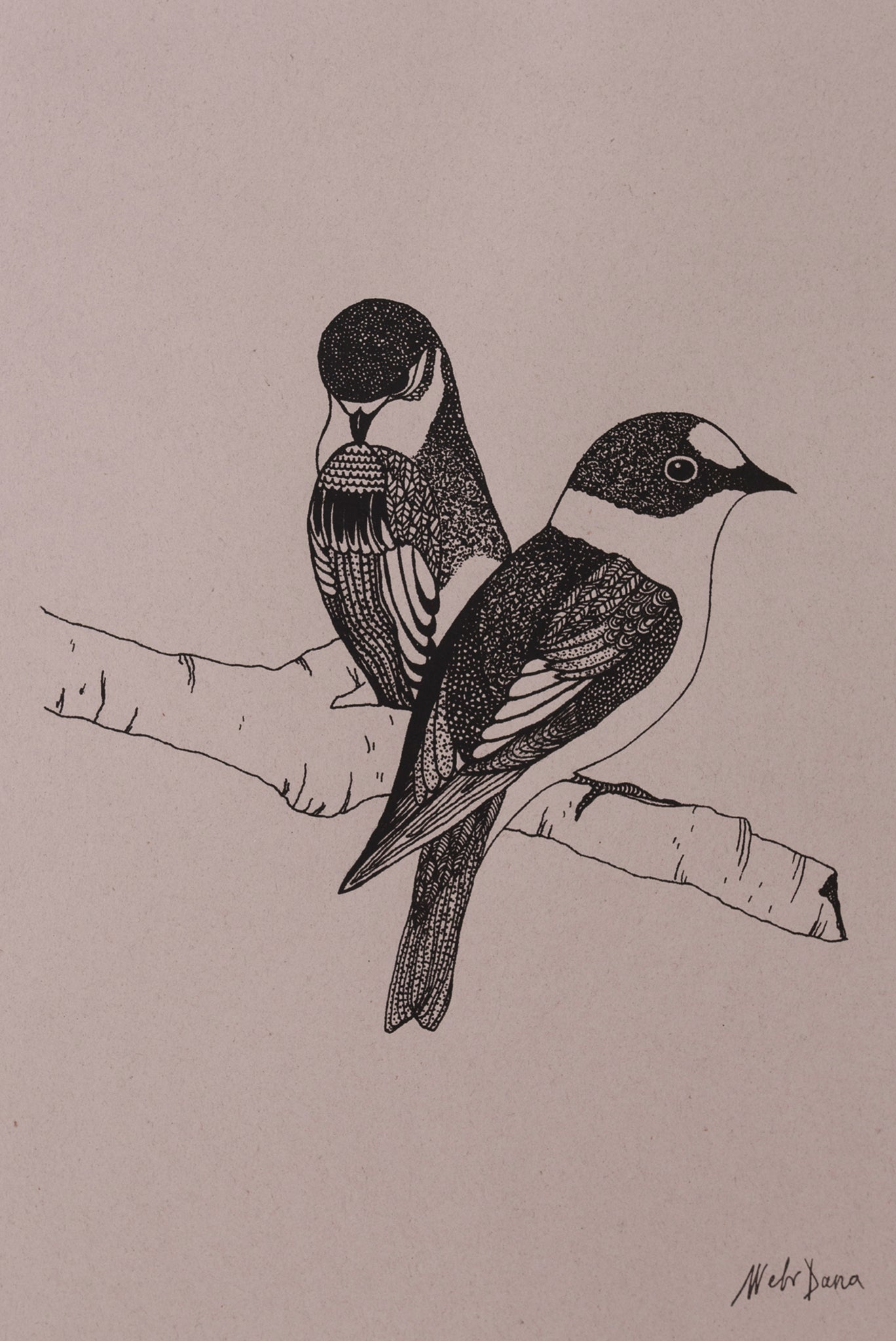 FINCHES PRINT